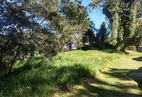 Foto de terreno habitacional en venta en atlacomulco , hacienda de valle escondido, atizapán de zaragoza, méxico, 11654978 No. 01