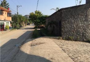 Foto de terreno habitacional en venta en  , atlacomulco, jiutepec, morelos, 9332919 No. 01
