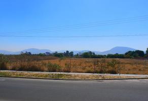 Foto de terreno comercial en venta en atlixco, puebla 101, atlixco centro, atlixco, puebla, 0 No. 01