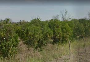 Foto de terreno habitacional en venta en  , atongo de abajo, cadereyta jiménez, nuevo león, 6507857 No. 01
