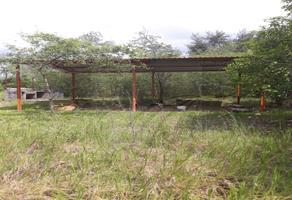 Foto de terreno habitacional en venta en  , atongo de abajo, cadereyta jiménez, nuevo león, 9160008 No. 01