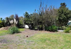 Foto de terreno habitacional en venta en atotonilco 13 , santa ana tlapaltitlán, toluca, méxico, 0 No. 01