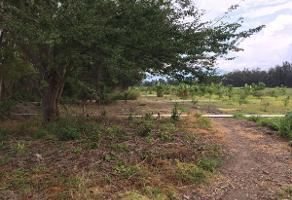 Foto de terreno habitacional en venta en  , atotonilco el bajo, villa corona, jalisco, 5578275 No. 01