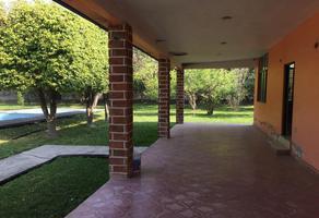 Foto de terreno habitacional en venta en  , atzompa, miacatlán, morelos, 7013904 No. 01