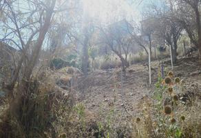 Foto de terreno habitacional en venta en  , aurora, oaxaca de juárez, oaxaca, 6560174 No. 01