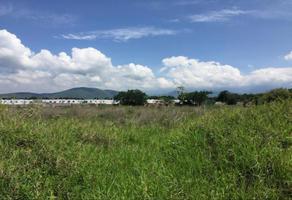 Foto de terreno habitacional en venta en autopista 0, centro, yautepec, morelos, 0 No. 01