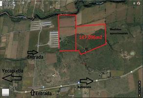 Foto de terreno comercial en venta en autopista a ocuitulco kilometro 6 , yecapixtla, yecapixtla, morelos, 0 No. 01