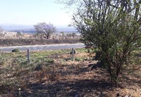 Foto de terreno habitacional en venta en autopista a zapotlanejo , tonalá centro, tonalá, jalisco, 7015115 No. 01
