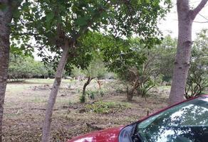 Foto de terreno comercial en venta en autopista cardel veracruz , veracruz, veracruz, veracruz de ignacio de la llave, 6958241 No. 01