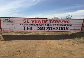 Foto de terreno habitacional en venta en autopista guadalajara, zapotlanejo. , el moral, tonalá, jalisco, 0 No. 01