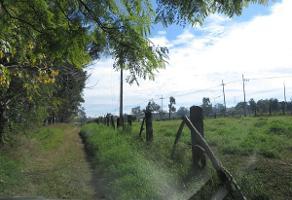 Foto de terreno habitacional en venta en autopista guadalajara - zapotlanejo , tonalá centro, tonalá, jalisco, 14375279 No. 01