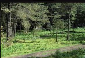 Foto de terreno habitacional en venta en autopista méxico-puebla , xalitzintla, san nicolás de los ranchos, puebla, 18723837 No. 01