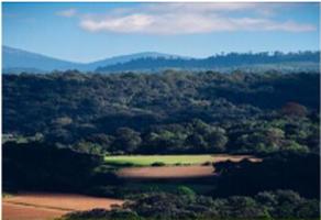 Foto de terreno habitacional en venta en autopista morelia-uruapan, pátzcuaro, michoacán, 61600 , pátzcuaro centro, pátzcuaro, michoacán de ocampo, 17150358 No. 01