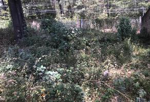 Foto de terreno habitacional en venta en avándaro 43, avándaro, valle de bravo, méxico, 0 No. 01
