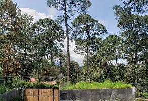 Foto de terreno habitacional en venta en  , avándaro, valle de bravo, méxico, 0 No. 01
