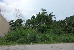 Foto de terreno industrial en venta en avenida 45 norte , playa del carmen centro, solidaridad, quintana roo, 6613180 No. 01