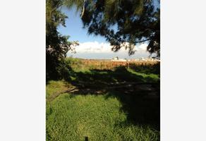 Foto de terreno comercial en venta en avenida 5 de mayo , tenantitla (san antonio tecomitl), milpa alta, df / cdmx, 13248555 No. 01