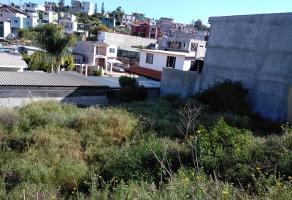 Foto de terreno habitacional en venta en avenida abedules 10, lomas y jardines de valle verde, ensenada, baja california, 0 No. 01