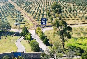 Foto de rancho en venta en avenida adolfo lopez mateos km4 , san miguel xometla, acolman, méxico, 19235662 No. 01