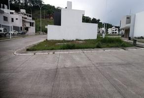 Foto de terreno habitacional en venta en avenida alicia f avila , las cumbres, xalapa, veracruz de ignacio de la llave, 0 No. 01
