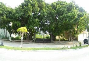 Foto de terreno habitacional en renta en avenida castellot , miami, carmen, campeche, 0 No. 01
