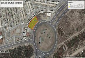 Foto de terreno comercial en venta en avenida castilla , valle del norte, salinas victoria, nuevo león, 18766071 No. 01