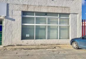 Foto de bodega en renta en avenida chichen itza 137, supermanzana 63, benito juárez, quintana roo, 13384556 No. 01