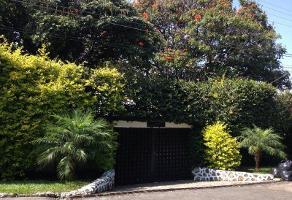 Foto de casa en renta en avenida circunvalación lote 33, tamoanchan, jiutepec, morelos, 12131640 No. 01