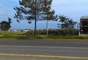 Foto de nave industrial en venta en avenida codagem , lázaro cárdenas, metepec, méxico, 15054759 No. 01
