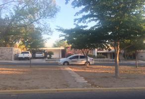 Foto de casa en renta en avenida de anza 809 , pitic, hermosillo, sonora, 16418158 No. 01