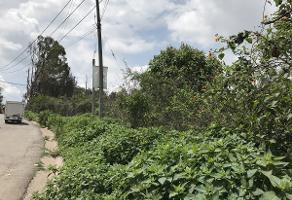 Foto de terreno habitacional en venta en avenida de la cruz , rancho la cruz, tonalá, jalisco, 5373723 No. 01