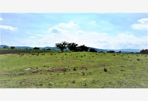 Foto de terreno industrial en venta en avenida de la juventud 101, huaquechula, huaquechula, puebla, 12932460 No. 01