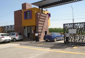 Foto de departamento en renta en avenida de las flores , villas torres bodet, cuautlancingo, puebla, 15638948 No. 01