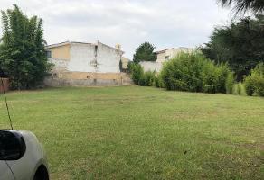 Foto de terreno habitacional en venta en avenida de las palmas 100, villa magna, zapopan, jalisco, 6007811 No. 03