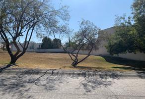 Foto de terreno habitacional en venta en avenida de las palmas , villa palma, zapopan, jalisco, 0 No. 01