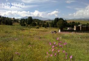 Foto de terreno industrial en venta en avenida de los pinos , san pedro, almoloya de juárez, méxico, 15991296 No. 01