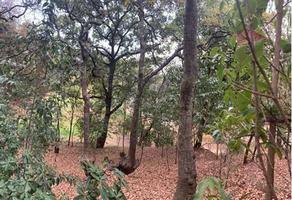 Foto de terreno habitacional en venta en avenida de los poetas , santa fe cuajimalpa, cuajimalpa de morelos, df / cdmx, 18620907 No. 01