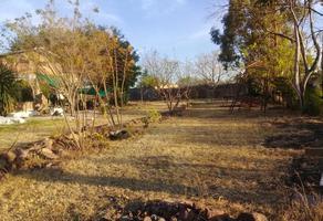 Foto de terreno habitacional en venta en avenida del cerrito 38, jardines de irapuato, irapuato, guanajuato, 17295471 No. 01
