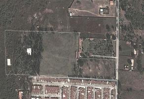 Foto de terreno habitacional en venta en avenida del cortijo , cima del sol, tlajomulco de zúñiga, jalisco, 6930621 No. 01