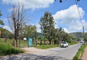 Foto de terreno habitacional en venta en avenida del cortijo , tlajomulco centro, tlajomulco de zúñiga, jalisco, 5756168 No. 02