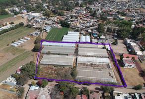 Foto de terreno comercial en venta en avenida del ejido 20, xocotlán, texcoco, méxico, 0 No. 01