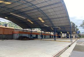 Foto de terreno comercial en venta en avenida del panteon , la era, ixtapaluca, méxico, 16804913 No. 01