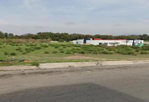 Foto de terreno comercial en venta en avenida felipe angeles , tepeapulco centro, tepeapulco, hidalgo, 18356680 No. 01