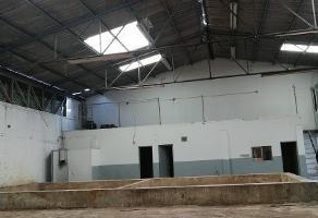 Foto de nave industrial en renta en avenida gobernador curiel , zona industrial, guadalajara, jalisco, 14001192 No. 01