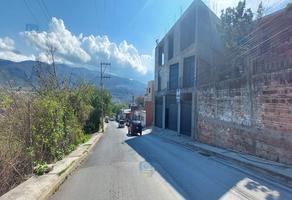 Foto de local en renta en avenida gobernadores , los gobernadores, chilpancingo de los bravo, guerrero, 20119341 No. 01