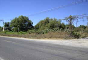 Foto de terreno habitacional en venta en avenida gonzalez gallo , chapala centro, chapala, jalisco, 4246564 No. 02