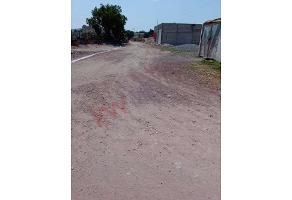 Foto de terreno habitacional en venta en avenida independencia , huizache, san agustín tlaxiaca, hidalgo, 0 No. 01