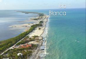 Foto de terreno habitacional en venta en avenida isla blanca sn , isla blanca, isla mujeres, quintana roo, 0 No. 01