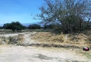 Foto de terreno habitacional en venta en avenida jesus michel gonzalez 0, las flores, tlajomulco de zúñiga, jalisco, 0 No. 01