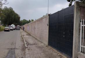 Foto de terreno habitacional en venta en avenida juarez s/n , san josé, chicoloapan, méxico, 20316421 No. 01